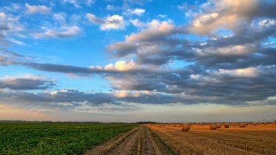 Betalingsproblemen voor landbouwbedrijven als gevolg van Corona?