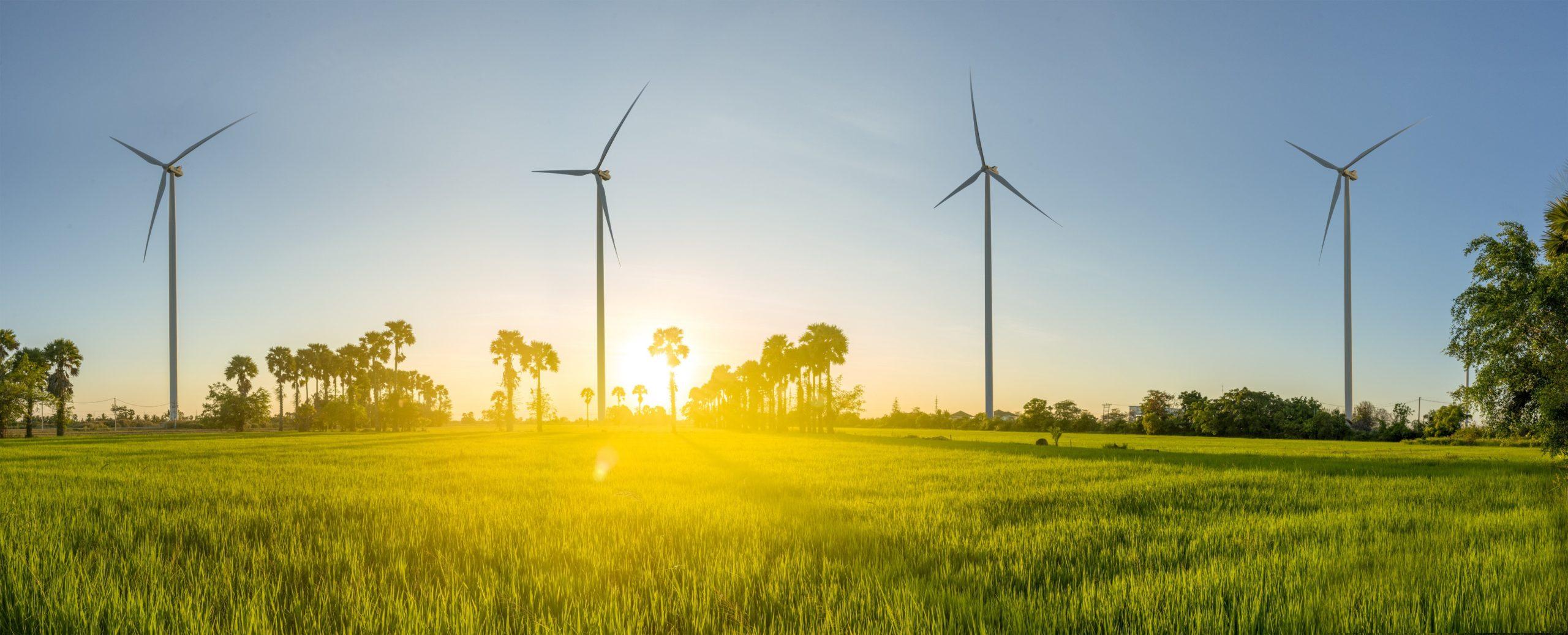 milieu afval energie